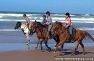 Wild Coast Horse Trails
