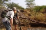 Zululand Walking Safaris